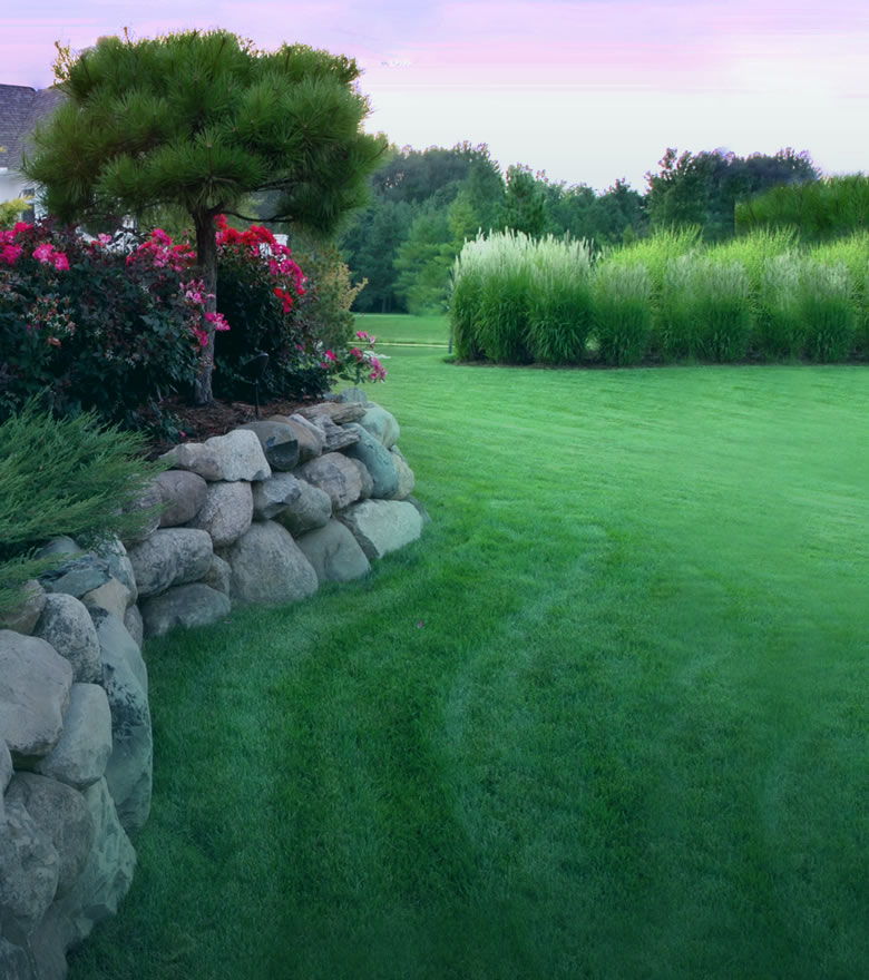 Lawn Care Service - Aeration, Fertilization, Liming, Over Seeding, Weed Control