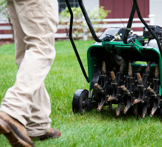 Aerating and Overseeding